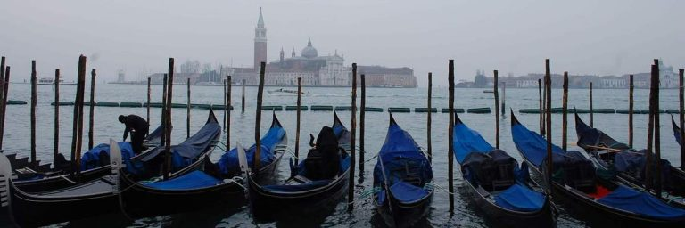Gonadal in Venice