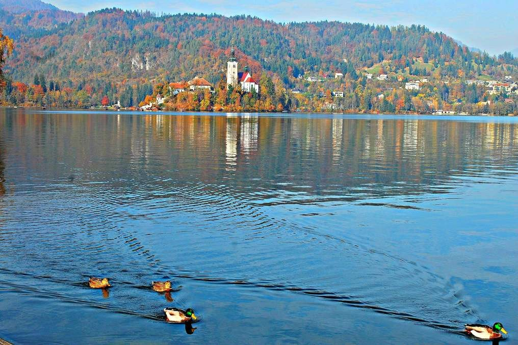 Lake Bled and Pilgrimage Church of the Assumption of Maria