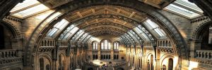 Nine Museums You Must Visit in London