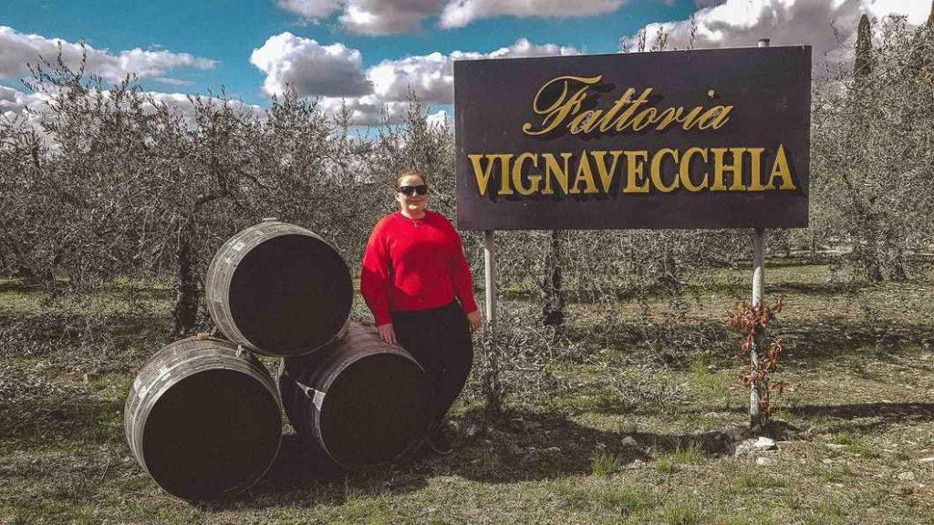 Vignavecchia winery