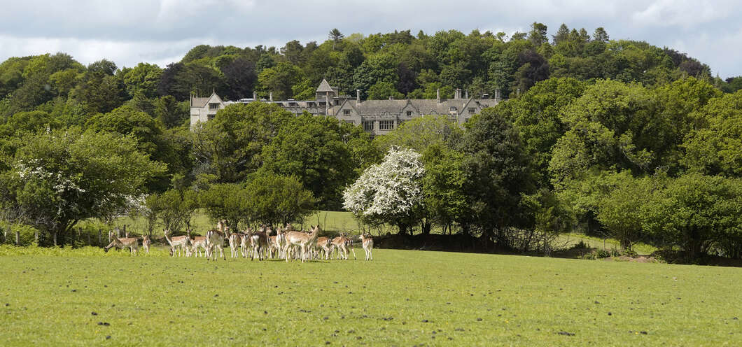 Bovey Castle in Newton Abbot, Devon should be on the castle hotels to stay in.