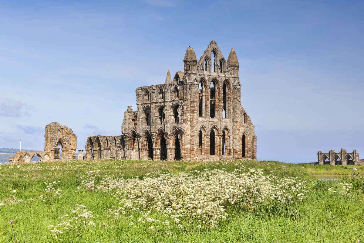 Whitby Abbey Spring