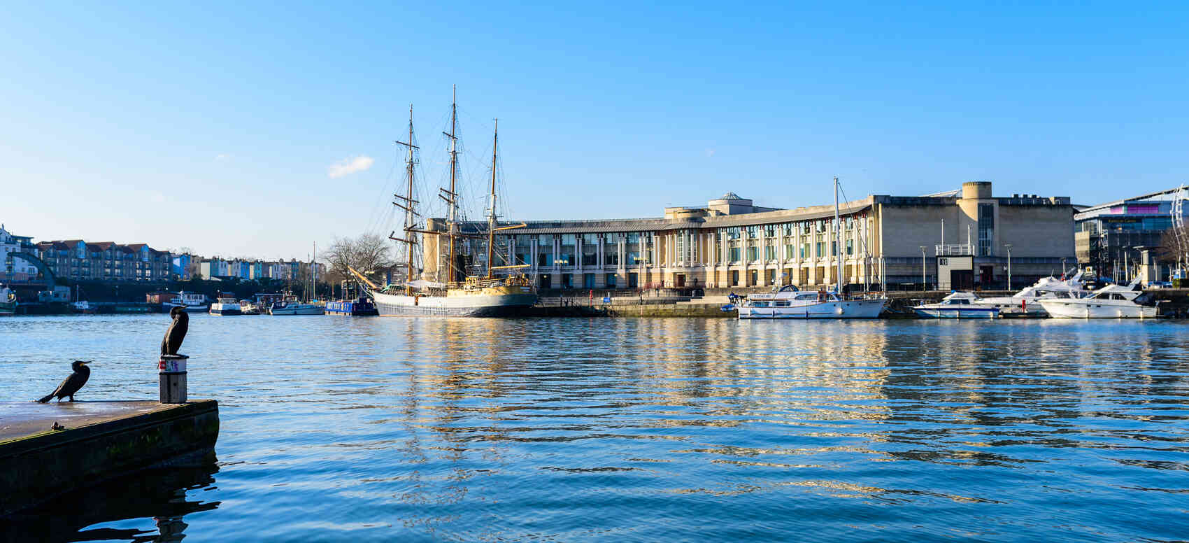 Bristol harbourside showing the buildings ships and water birds
