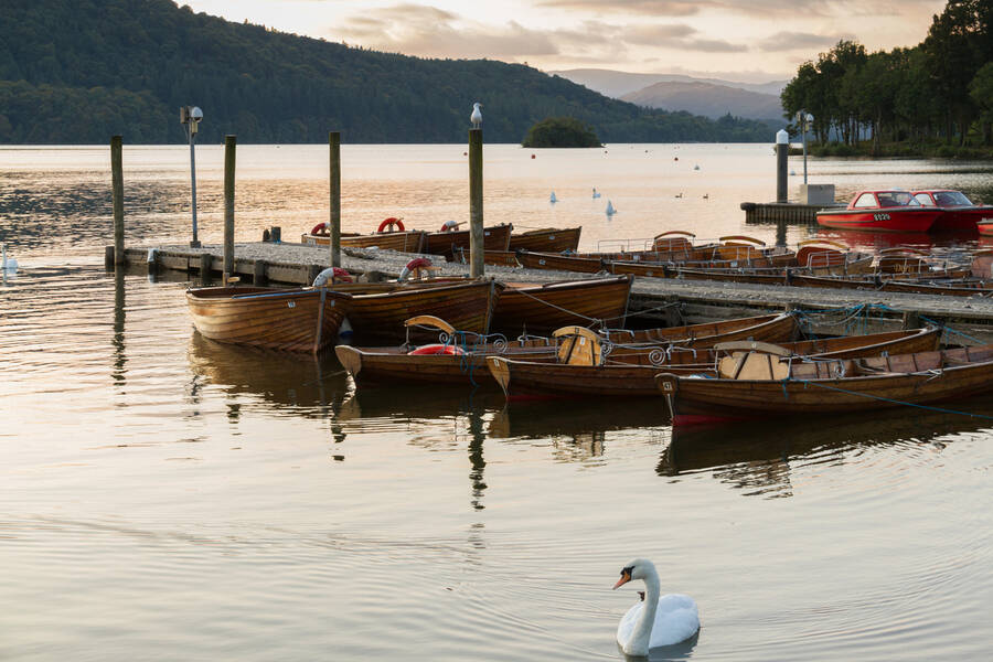 swan-and-moored-boats-in-Lake-Windermere